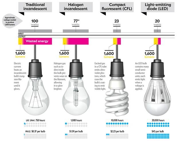 bulb_type
